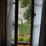 View from room's French windows