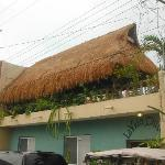 Palapa on roof of La Vida Dulce - great for relaxation!