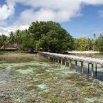 The dock and reefs in front of Tavanipupu resort