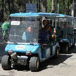 Photo of Camping Mare e Pineta