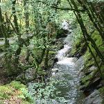 Hafod - Lady's Trail 1