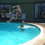 ninja pool play