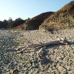 """Eternal beachgoer - natural """"sculpture"""" made by Ramance' owner"""