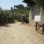 Roman road walk to Alasso