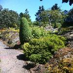 One of the sunny gardens