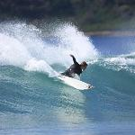 Port Stephens Learn To Surf