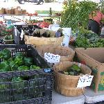 Farm grown veggies at Friday farmers market