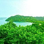 View of Papagayo