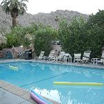The pool with a mountain view and cascading grapefruit branches with fruit