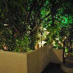 Jardin desde el 2do piso