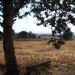 sur le chemin de Saletta