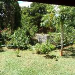 View of the garden from cabana