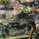 Aquarium Zaragoza