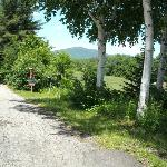 This is the view to the right of you when you drive in the campground.