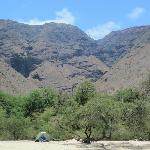 My office for the month
