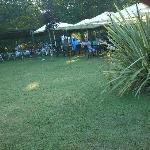 jardín y bar de piscina
