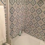 la salle de bain (qui mérite d'être très rafraichie)