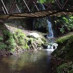 Cascada i riachuelo a 75 m.