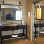 Vanity Sink Rm.432