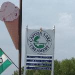 cayuga lake creamery