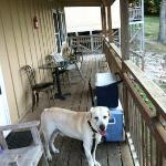 Cabin 3 & 4 shared deck