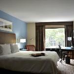 Hampton Inn NYC Seaport Room 203