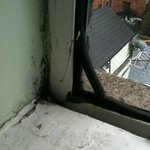 mouldy windowsil
