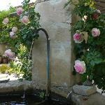 Beautiful fountain at hotel