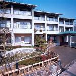 Photo de Island Hotel Urashima