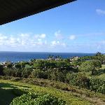 View from lanai #621
