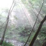 竜返しの滝への道