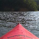 Kayaking was amazing