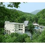 Tateshina Onsen Hotel Shinyu