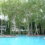 The biggest and most attractive pool in Palm Cove