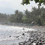 beach area at medewi surf point