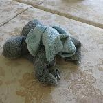 Bassett towel
