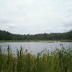 Beaver Lake Trail.