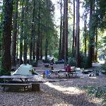 Tent sites with BBQ grills, picnic table and community firepit.