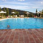 elise in het zwembad