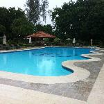 garden bar / pool