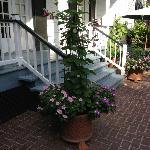 Back porch , beautiful plants & flowers !