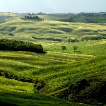 Exploring the nearby Val D'Orcia