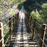 Momigi Suspension Bridge