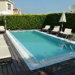 Violet Villa pool