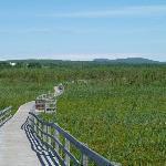 Marais de la Riviere aux Cerises
