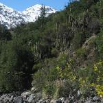 Cascada de las Animas