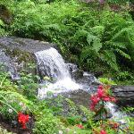 A waterfall at Glacier Gardens and Rainforest