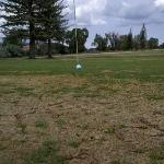 The average green on SRS golf course. sadly..the golf course was the best part of the resort