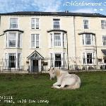 Even the horses enjoy a little rest and relaxation at The Meadowsweet Hotel