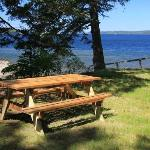 A great place for a picnic...one fine day in Maine.